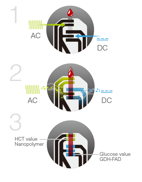 TaiDoc patented the 2 + 2 (2 enzymes plus 2 signals) technology, which uses two different wells on the strips to detect HCT value by AC signal and glucose value by DC signal.
